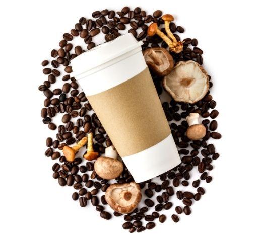 MUSHROOM COFFEE WORTH IT?